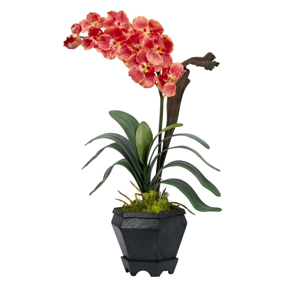 null 24.0 in. H Salmon Vanda with Black Hexagon Vase Silk Arrangement-DISCONTINUED