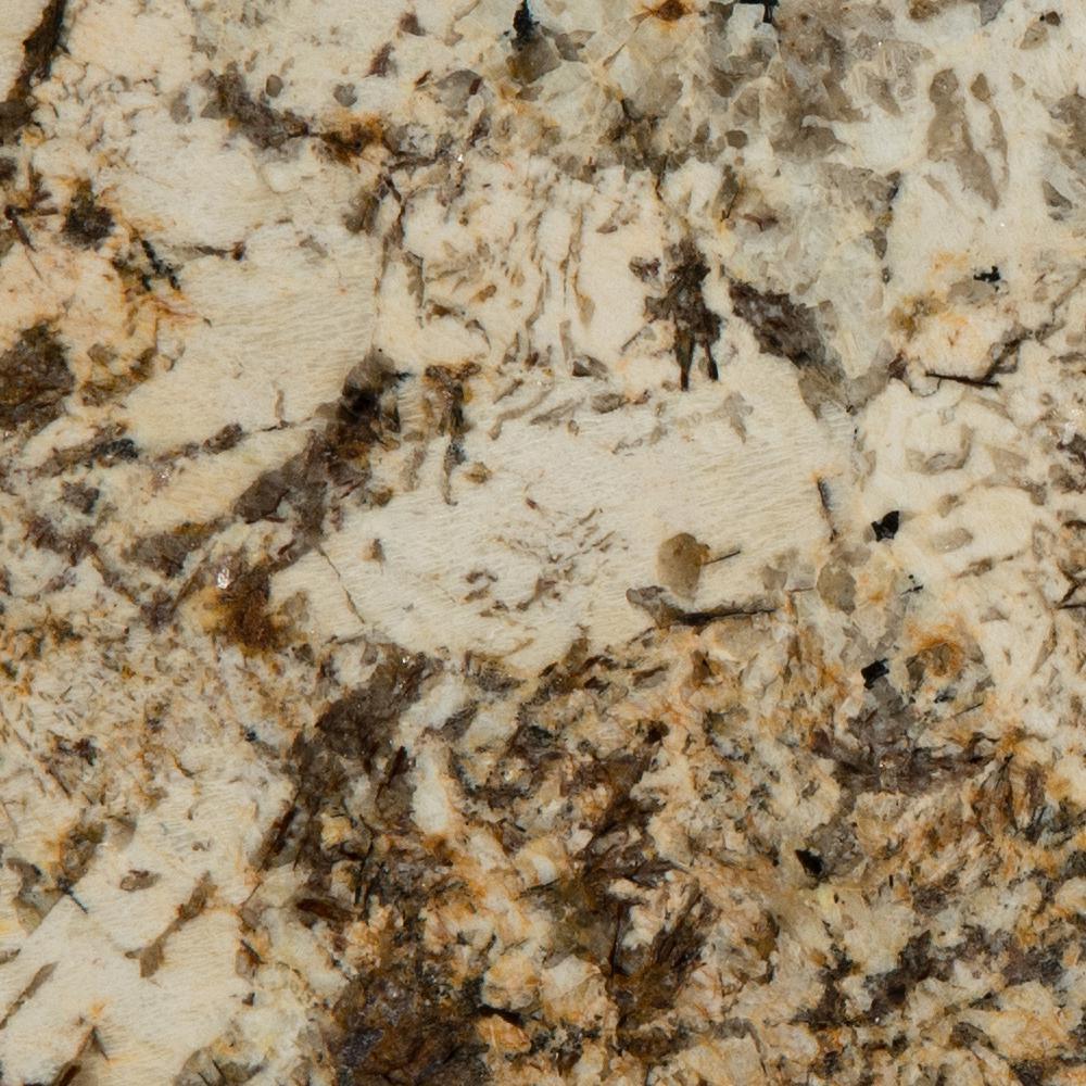 3 in  x 3 in  Granite Countertop Sample in Caravelas Gold