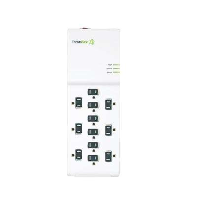 4 ft. 12-Outlet Surge Protector