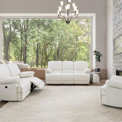Amazing Faux Leather Standard Sofa White Sofas Loveseats Dailytribune Chair Design For Home Dailytribuneorg