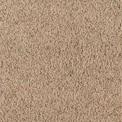 Carpet Sample - Lush I - Color Wagon Wheel Texture 8 in. x 8 in.
