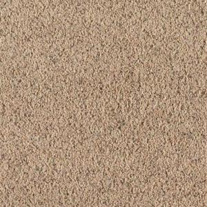 SoftSpring Carpet Sample - Lush II - Color Wagon Wheel Texture 8 inch x 8 in. by SoftSpring