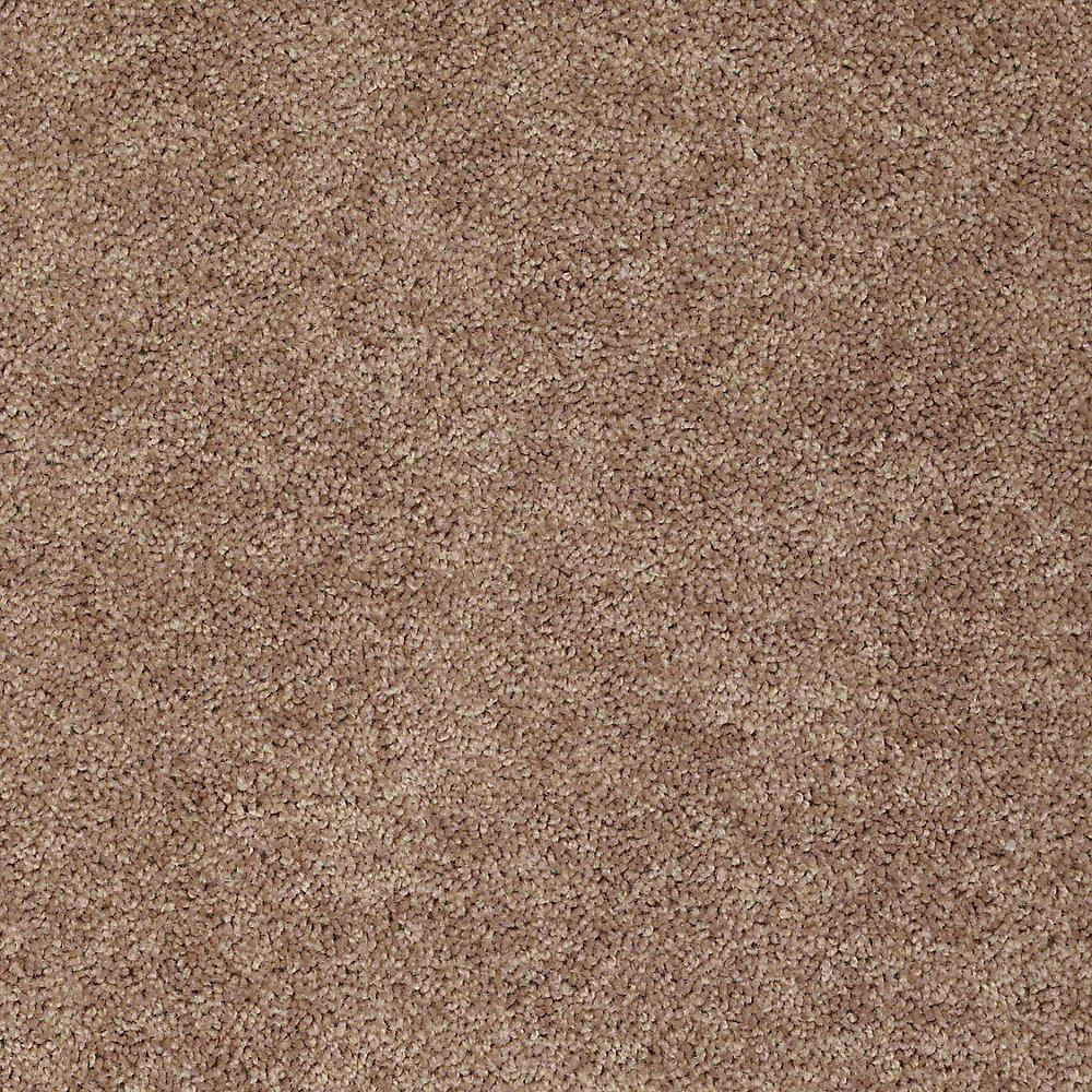 Carpet Sample - Alpine 12 - In Color Charity 8 in.
