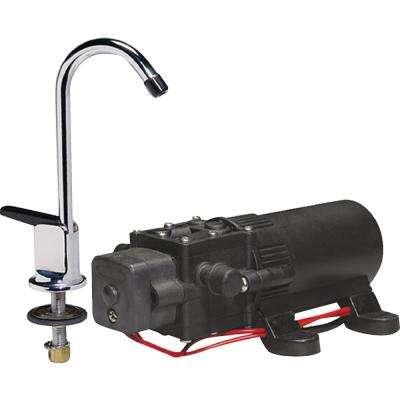RV Wps Water Pump and Faucet Combo