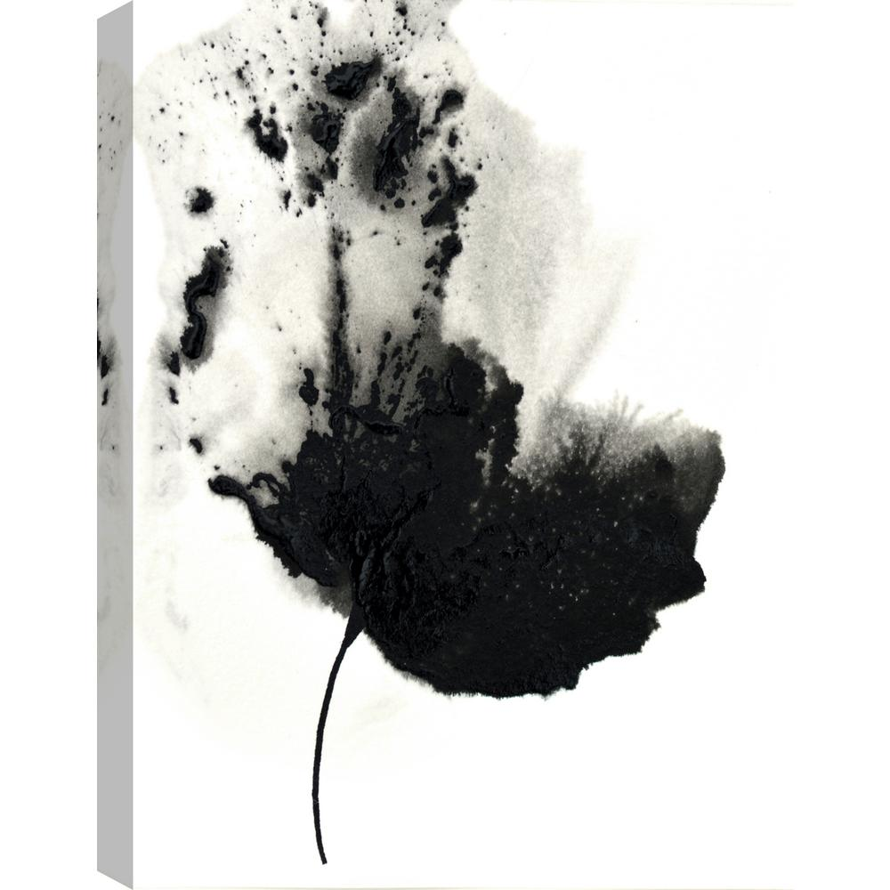 Artmaison Canada Black Flower Ii By Catherine Jeltes Floral Art