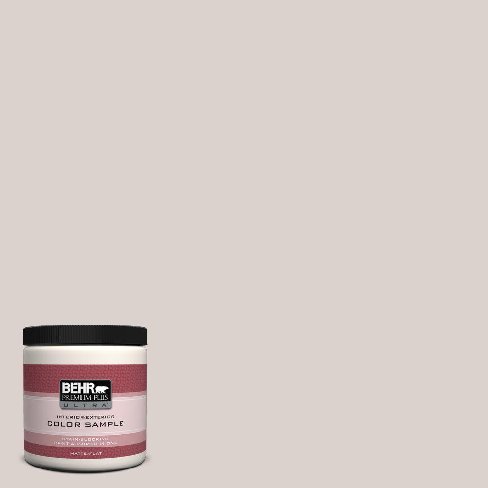 8 oz. #N200-1 Moth Gray Matte Interior/Exterior Paint and Primer in