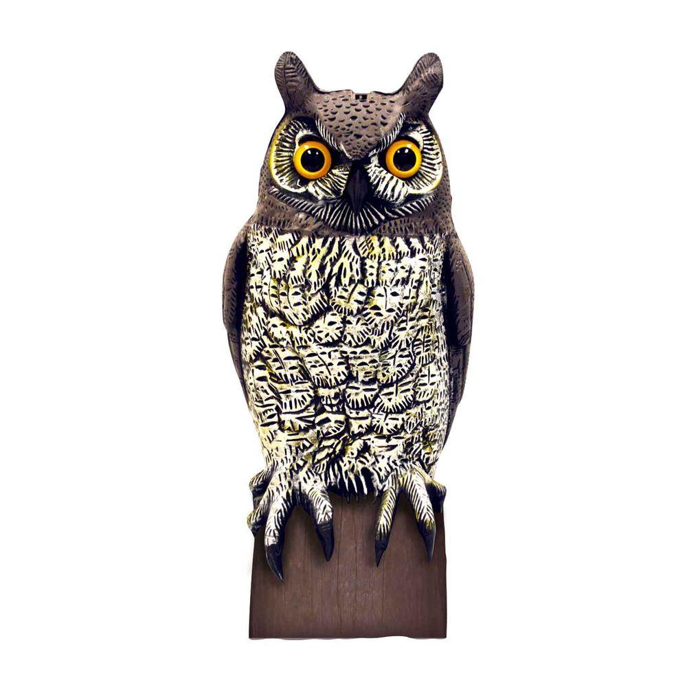 Merveilleux Aspectek VisualScare Molded Owl Scarecrow Bird Repellent