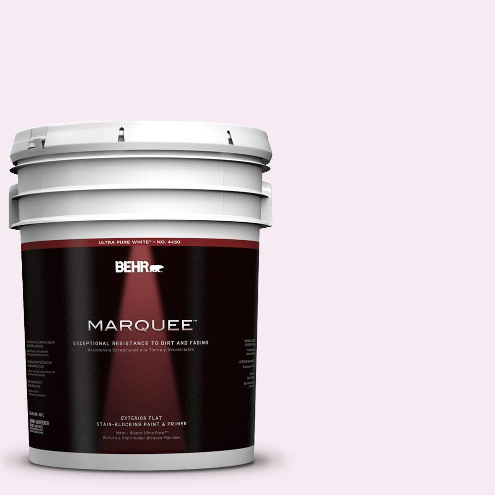 BEHR MARQUEE 5-gal. #100A-1 Barely Pink Flat Exterior Paint