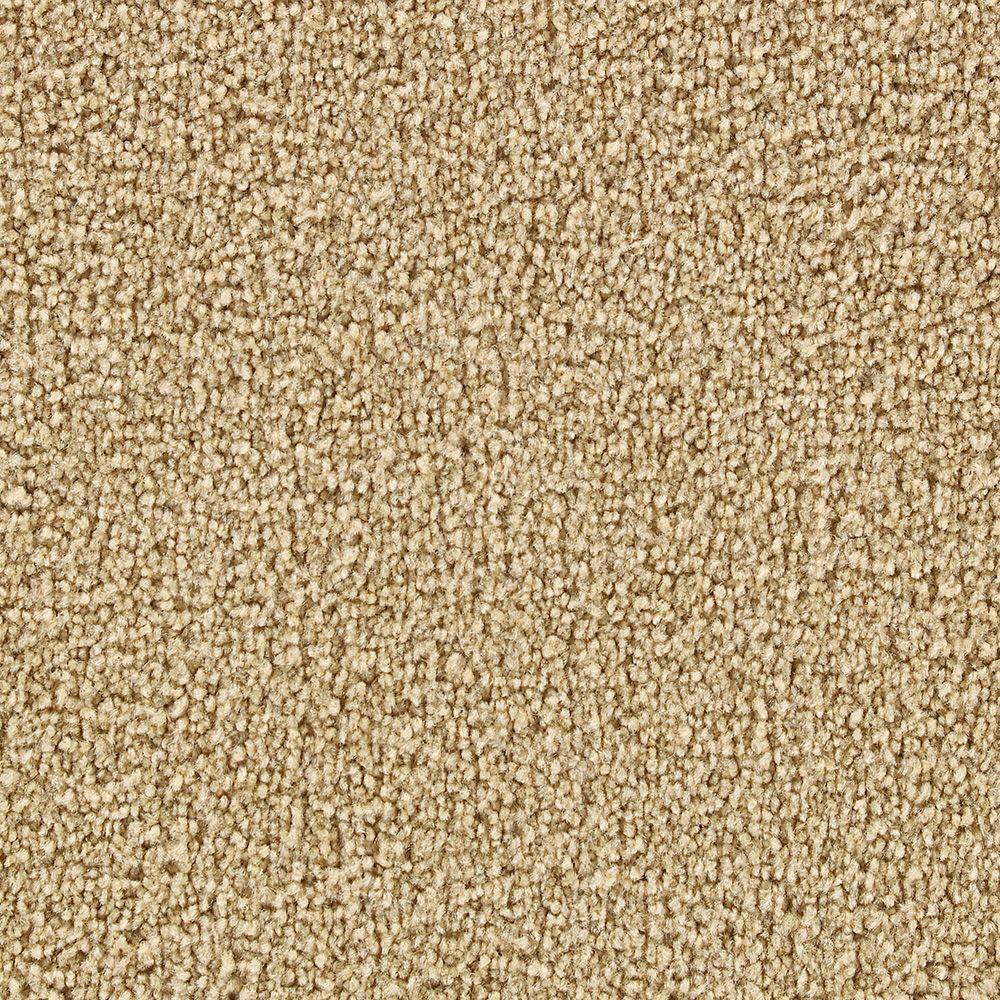 Martha Stewart Living Burghley Carton - 6 in. x 9 in. Take Home Carpet Sample