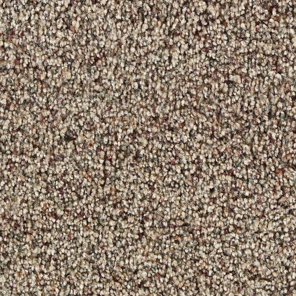 Martha Stewart Living Fontainebleau Snail Shell - 6 in. x 9 in. Take Home Carpet Sample-DISCONTINUED