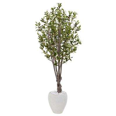 Indoor Olive Artificial Tree in White Oval Planter