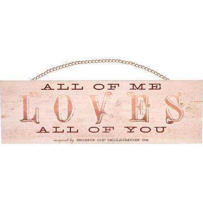 "All About Love ""All of me loves all of you.  Inspired by Song of Solomon 3:4"" with Copper Chain Wood Hanging Plaque"