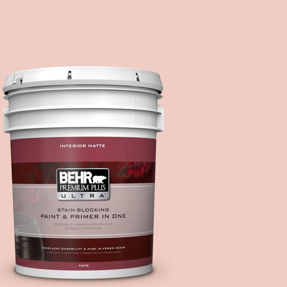 5 gal. #200E-2 Salmon Tint Flat/Matte Interior Paint