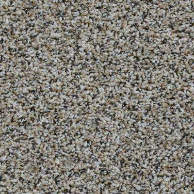 Carousel - Color Clockwork Twist 12 ft. Carpet