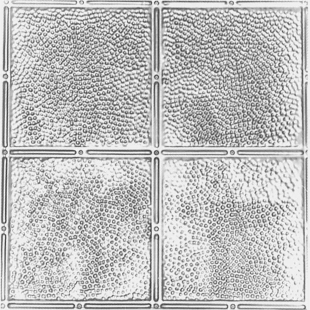 Shanko 2 ft. x 2 ft. Lay-in Suspended Grid Tin Ceiling Tile in Clear Lacquer (24 sq. ft. / case)