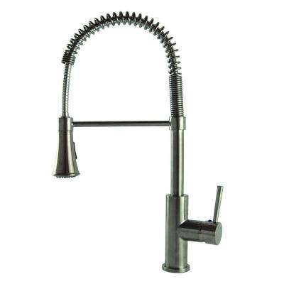 Modern European Residential Single-Handle Pull-Down Sprayer Kitchen Faucet in Stainless Steel