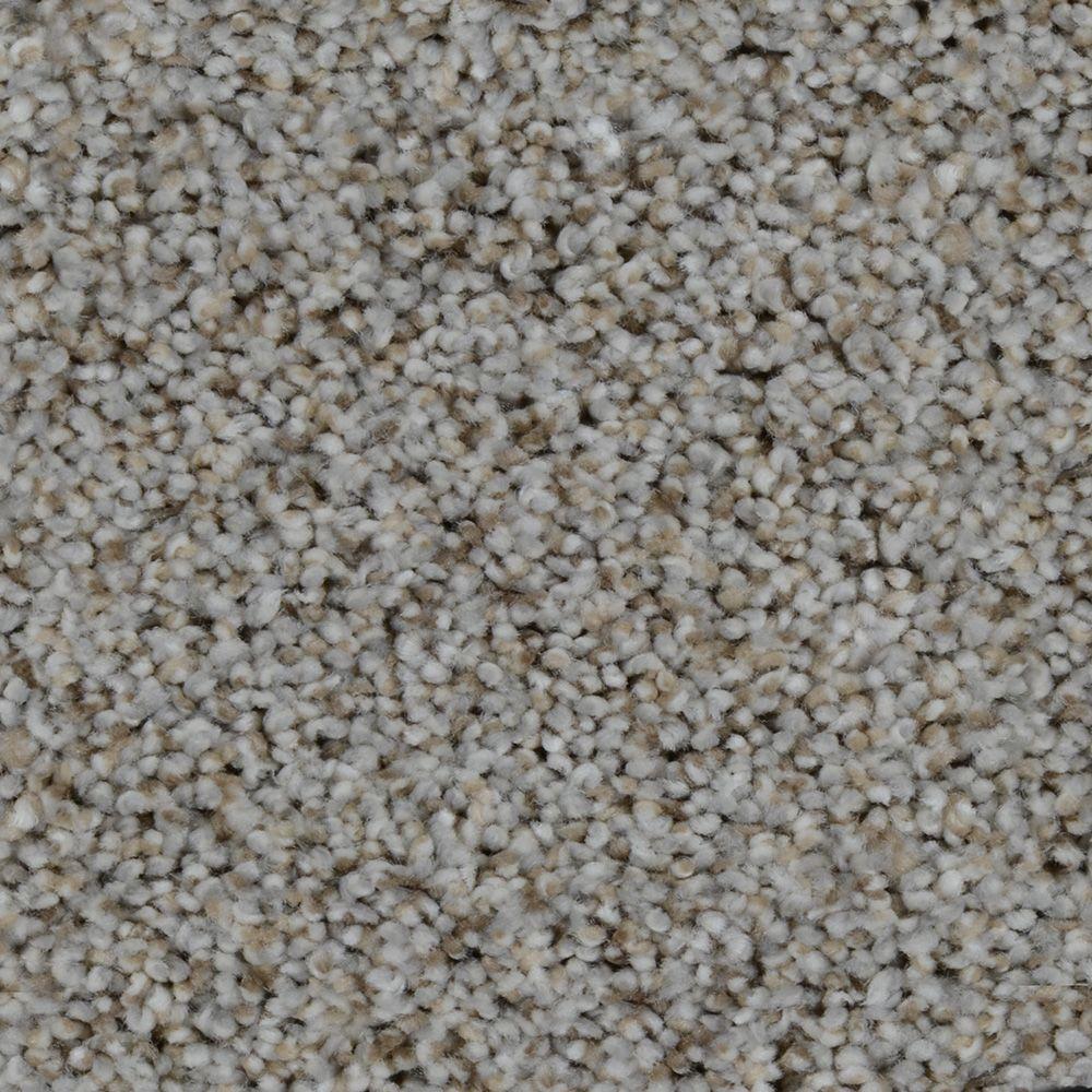 Trendy Threads Ii Color Hamilton Texture 12 Ft Carpet