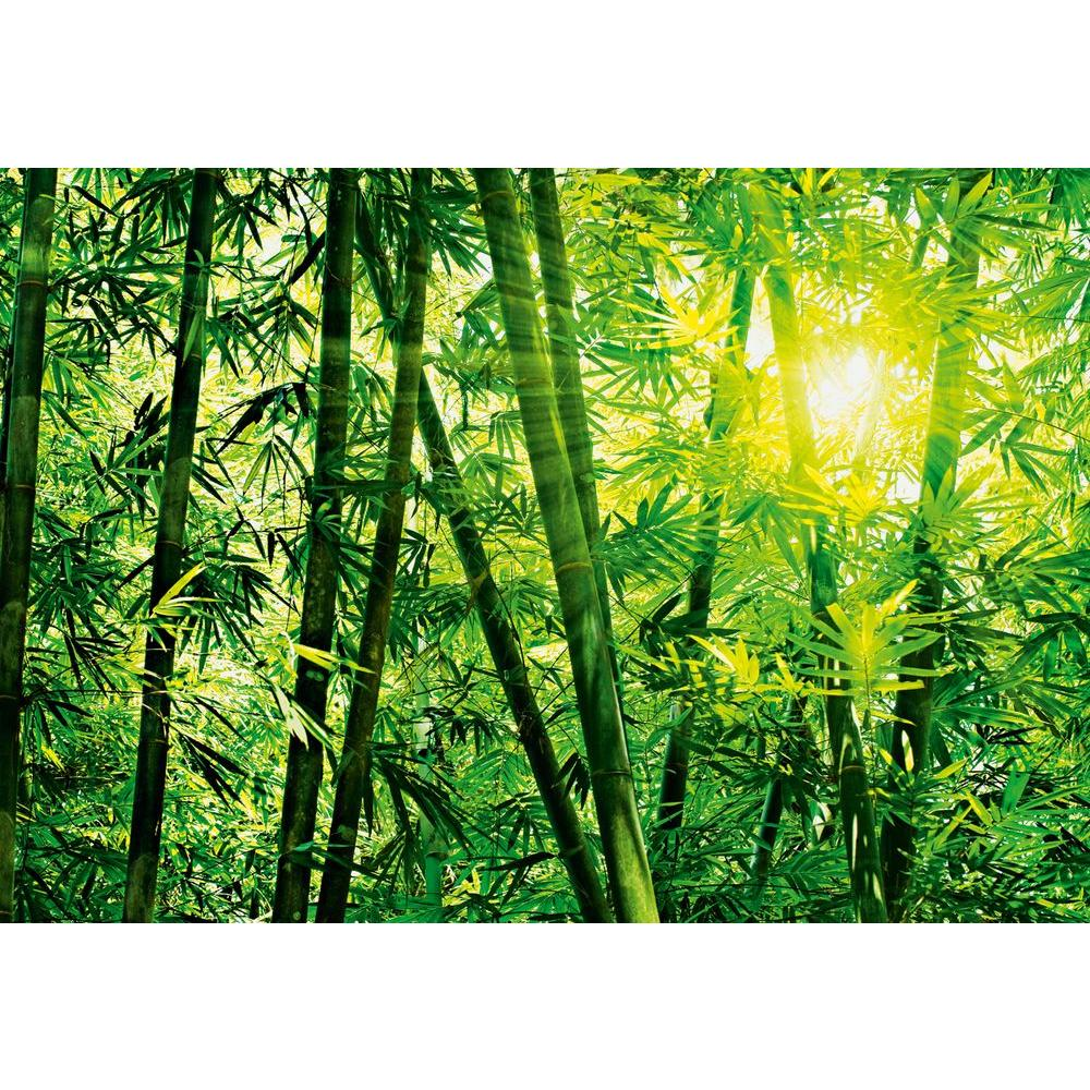 Ideal decor 100 in x 144 in bamboo forest wall mural for Bamboo forest wall mural