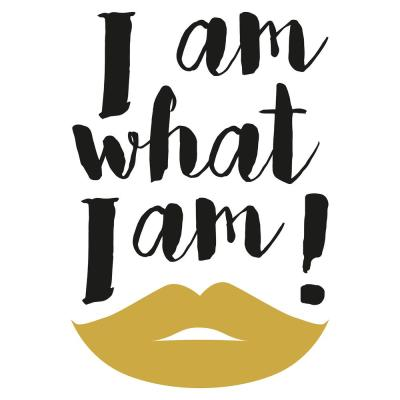 Metal What I Am Wall Quote Decal