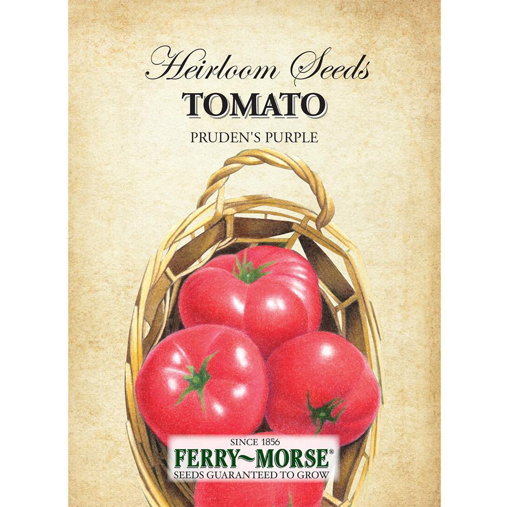 Tomato Prudens Purple Seed