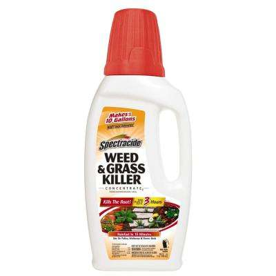 Weed and Grass Killer 32 oz. Concentrate