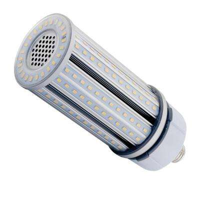 125-Watt Equivalent White Daylight Corn Cob LED Light Bulb