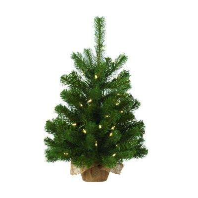 24 in. Pre-Lit LED Downswept Douglas Fir Artificial Table Tree