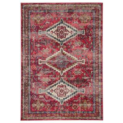 Amuze Pink 4 ft. x 5 ft. 8 In. Medallion Rectangle Rug