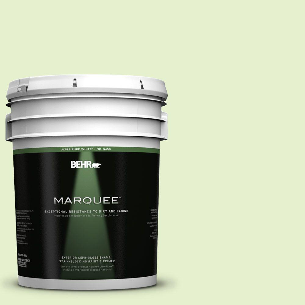 BEHR MARQUEE 5-gal. #420C-2 Water Sprout Semi-Gloss Enamel Exterior Paint