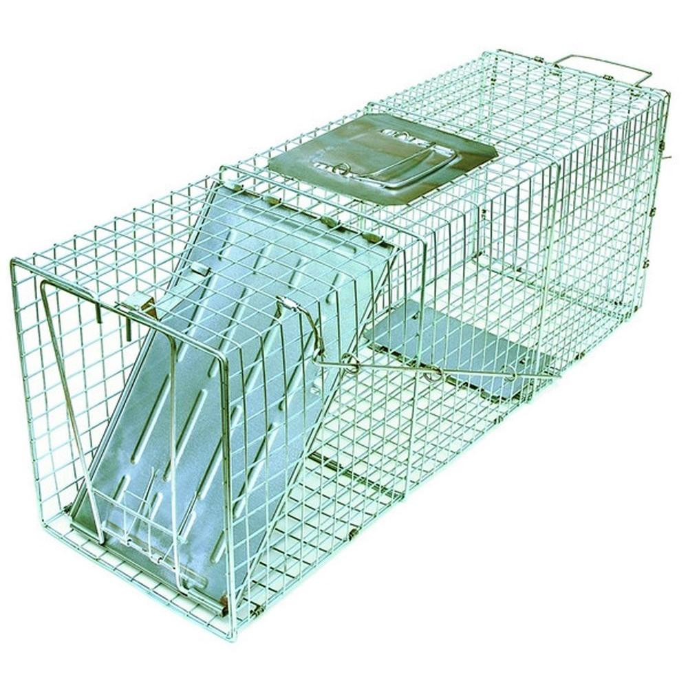 Answer Single Door Live Animal Cage Trap for Medium Size Pests