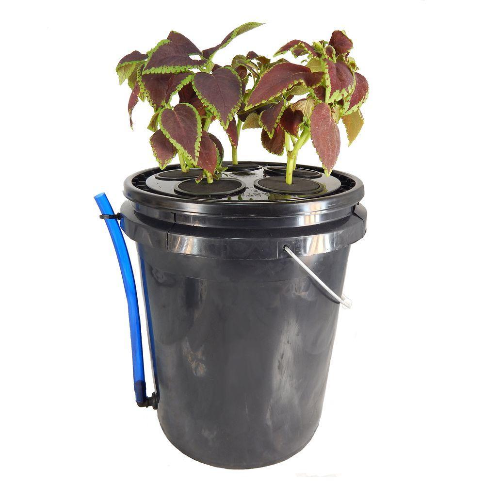Viagrow 5-Site Aeroponic Vegetative Clone System