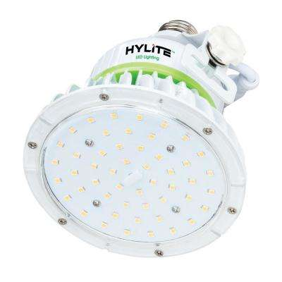 20W Lotus LED Lamp 100W HID Equivalent 5000K 2800 Lumens Ballast Bypass 120-277V E26 Base IP65 UL&CE Certified