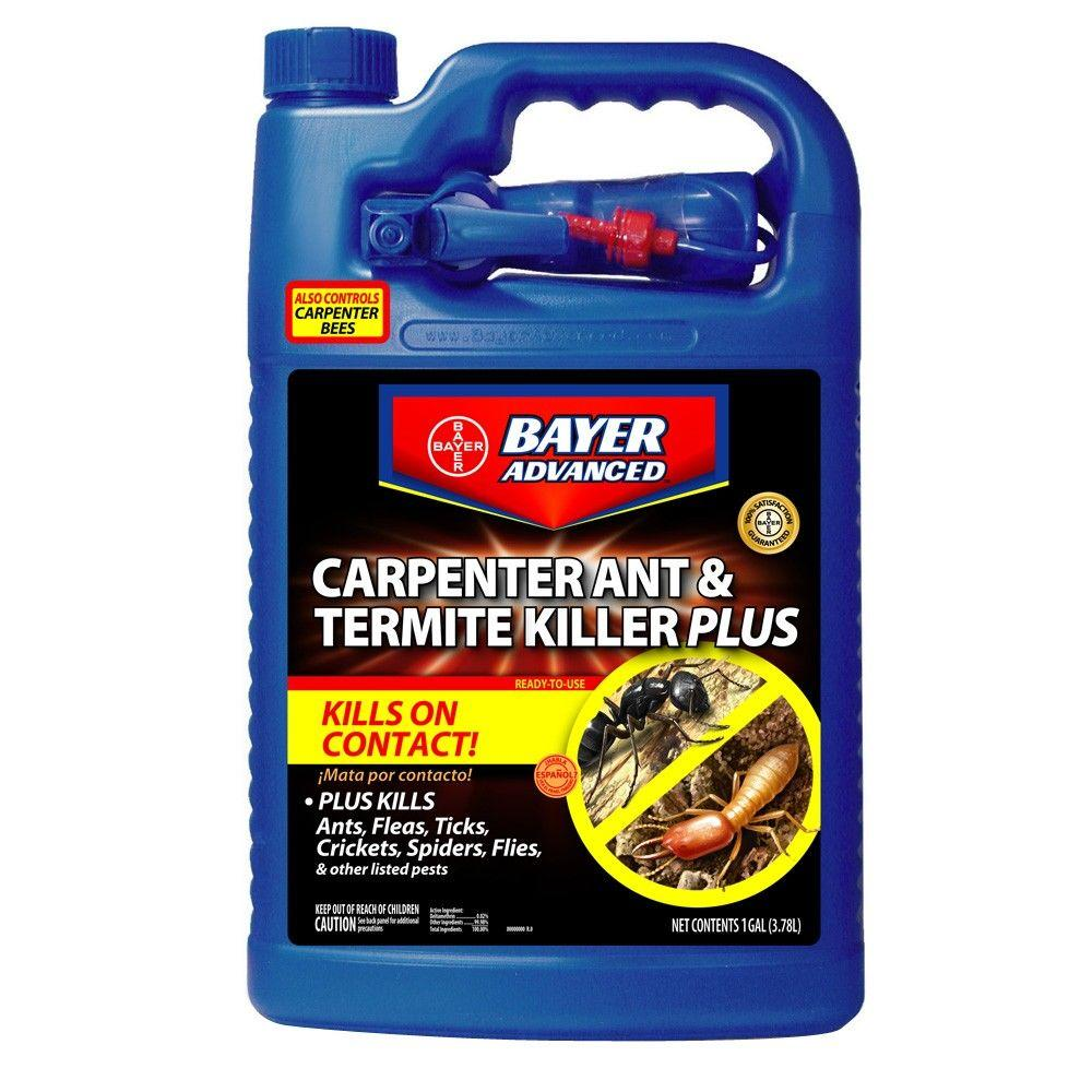 Bayer advanced 1 gal ready to use carpenter ant and for Advanced home