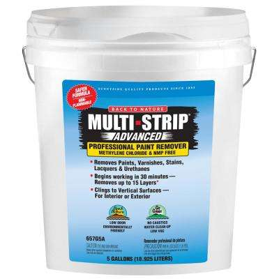 Advanced Series 5 gal  Multiple Layer Paint and Varnish Remover