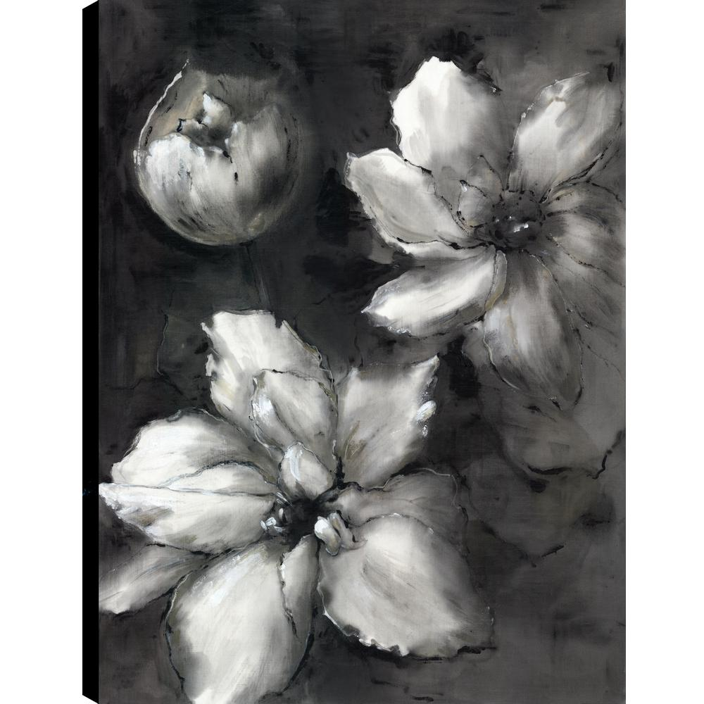 Black And White Florals Ii Fresh Printed Canvas Wall Art Dcor