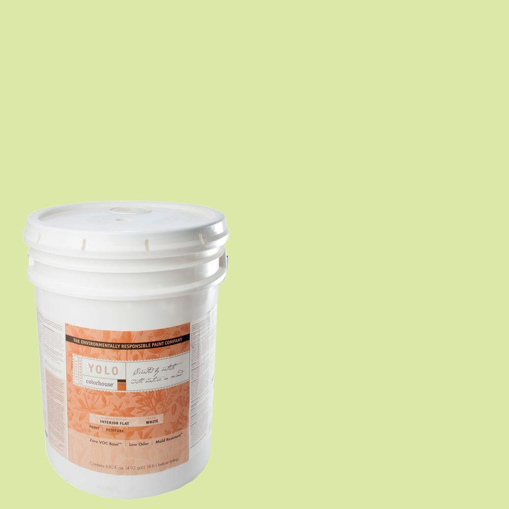 YOLO Colorhouse 5-gal. Sprout .05 Flat Interior Paint-DISCONTINUED