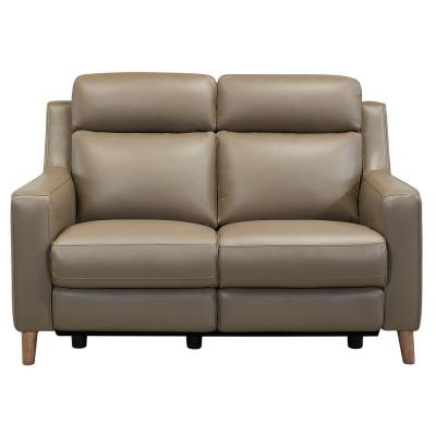 Wisteria Light Brown Wood and Taupe Genuine Leather Contemporary Loveseat