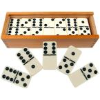 28-Piece Double-Six Dominoes Set with Case