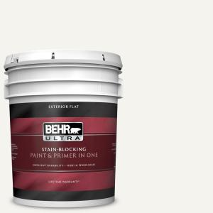 5 gal. #75 Polar Bear Flat Exterior Paint and Primer in One