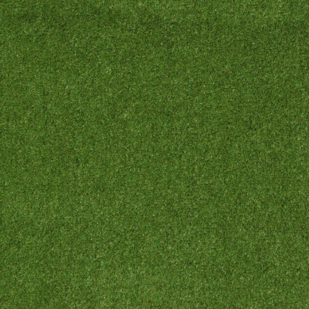 TrafficMASTER Toulon - Color Meadow 12 ft. Carpet