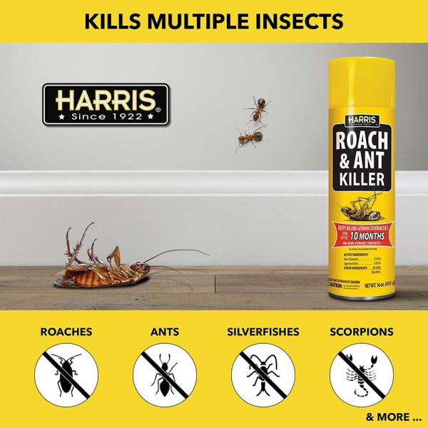 Harris 16 Oz Roach And Ant Killer 3 Pack Ra16 3pk The Home Depot