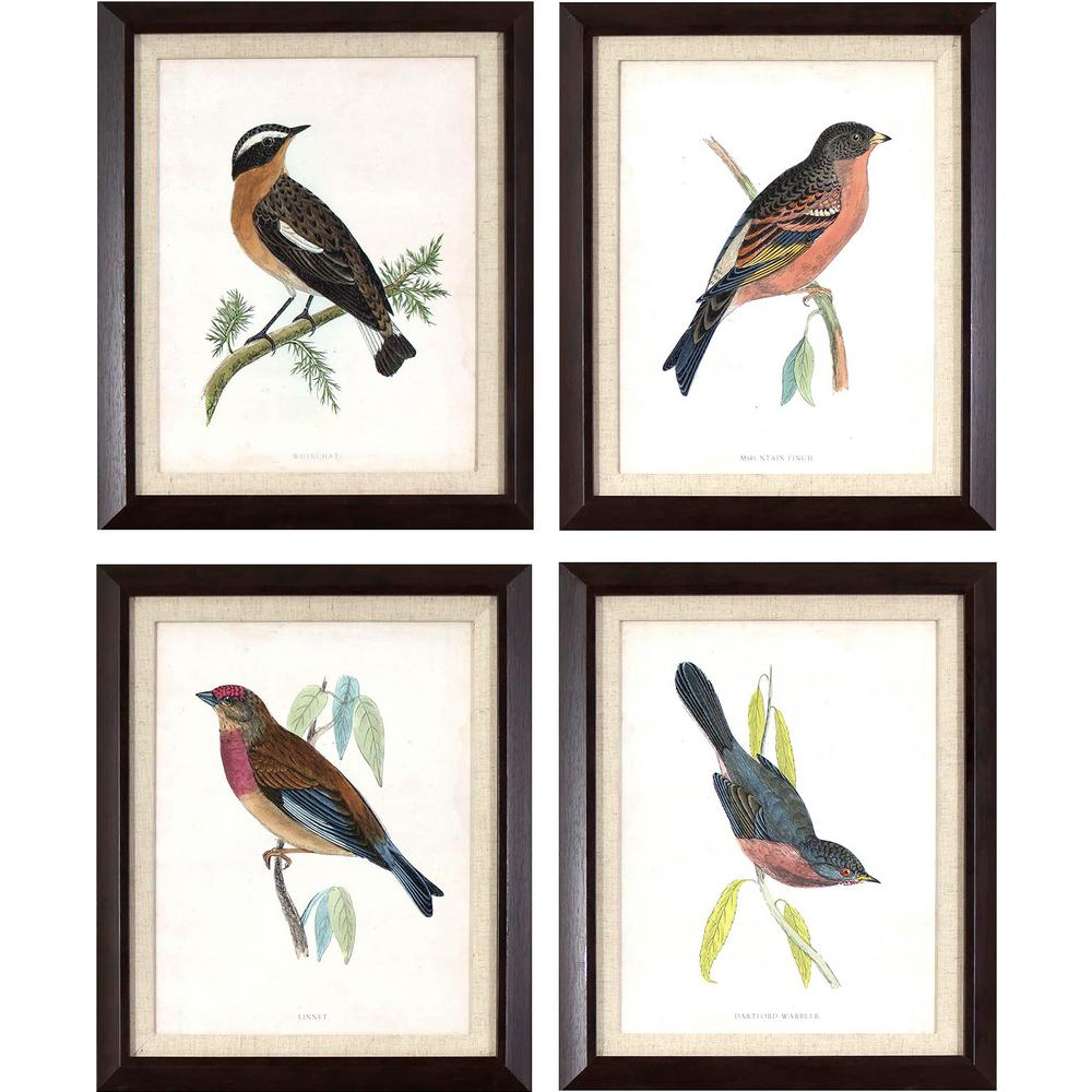 Decor Therapy 17.25 in. x 14.25 in. Antique Bird Studies Printed ...