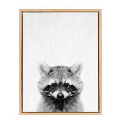 "24 in. x 18 in. ""Raccoon"" by Tai Prints Framed Canvas Wall Art"