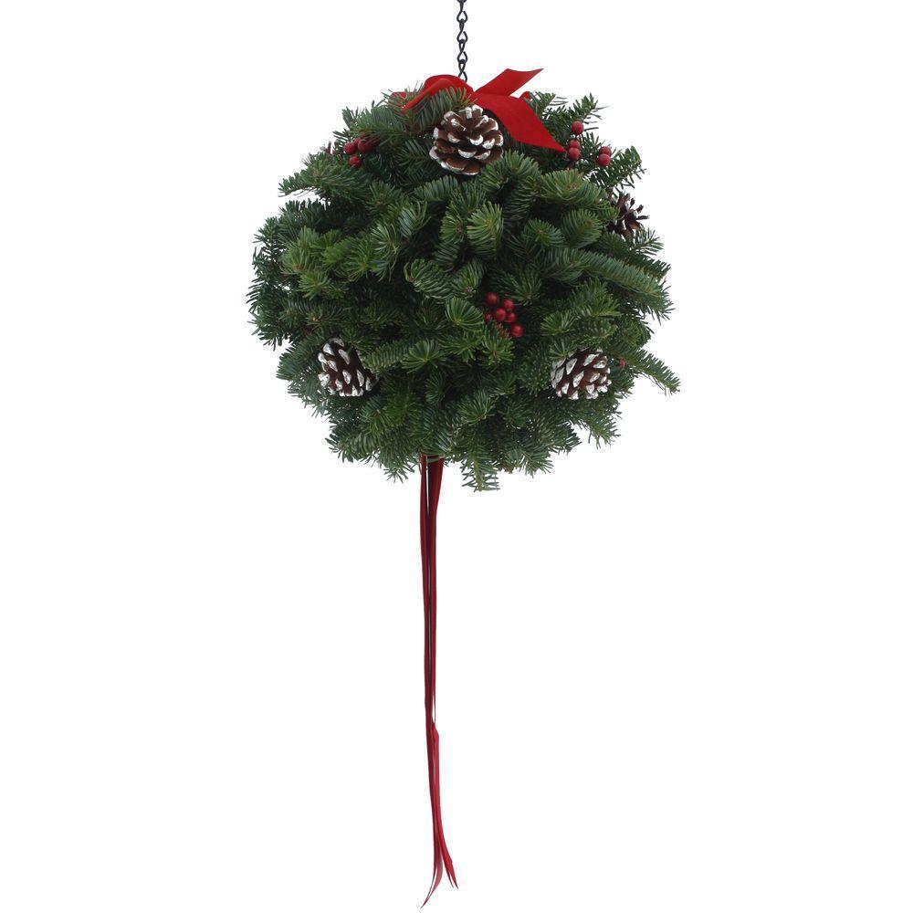 Worcester Wreath 12 in. Balsam Fir Classic Christmas Fresh Kissing Ball Arrangement : Multiple Ship Weeks Available