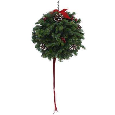 12 in. Balsam Classic Christmas Fresh Kissing Ball Arrangement : Multiple Ship Weeks Available