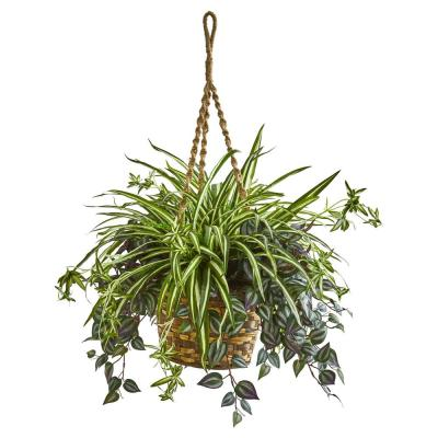 30 in. Indoor Wandering Jew and Spider Artificial Plant in Hanging Basket