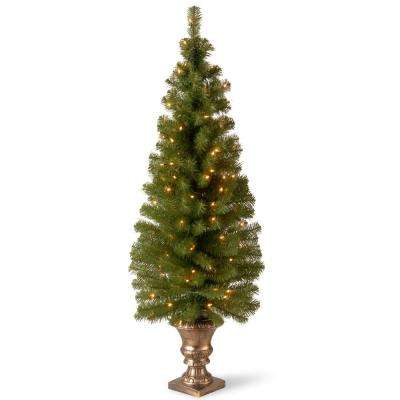 5 ft. Montclair Spruce Entrance Artificial Christmas Tree with Clear Lights