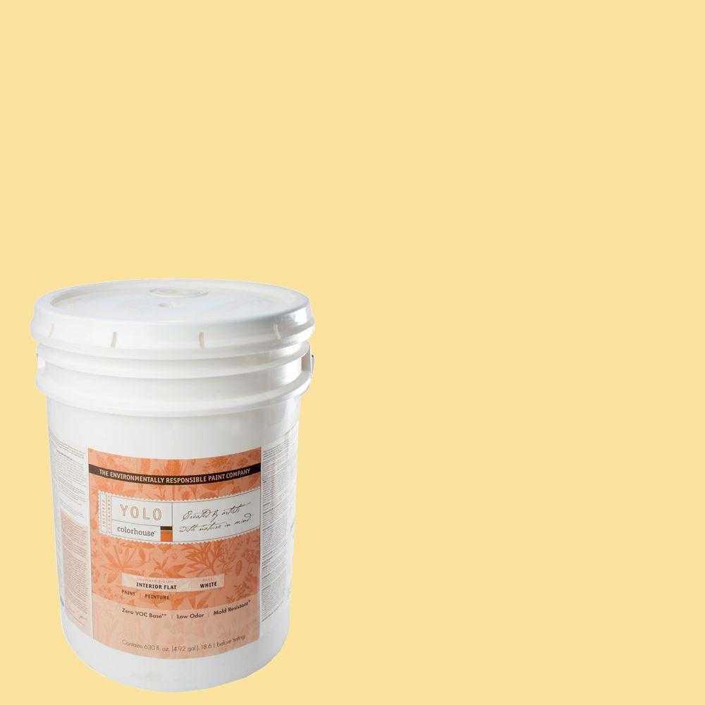 YOLO Colorhouse 5-gal. Aspire .02 Flat Interior Paint-DISCONTINUED