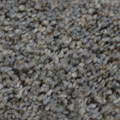 Carpet Sample - Trendy Threads I - Color Searcy Texture 8 in. x 8 in.
