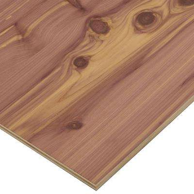 1/2 in. x 2 ft. x 8 ft. PureBond Aromatic Cedar Plywood Project Panel (Free Custom Cut Available)